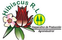 logo-hibiscus